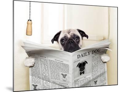 Dog Toilet-Javier Brosch-Mounted Premium Photographic Print