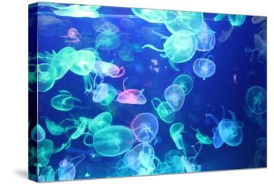Glowing Jellyfish-zhifengyuman-Stretched Canvas Print