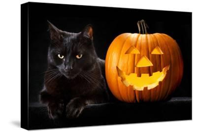 Halloween Pumpkin and Black Cat Scary Spooky and Creepy Horror Holiday Superstition Evil Animal And-kikkerdirk-Stretched Canvas Print