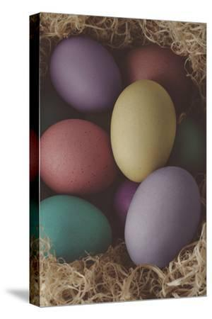 Painted Easter Eggs Nesting - Cross Processed-frannyanne-Stretched Canvas Print