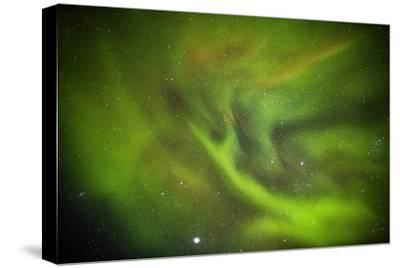 Aurora Borealis or Northern Lights, Lapland, Sweden-Arctic-Images-Stretched Canvas Print