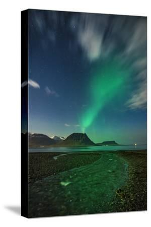 Aurora Borealis or Northern Lights, Iceland-Arctic-Images-Stretched Canvas Print