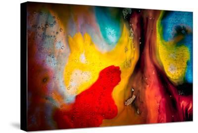 Never Tease a Weasel-Ursula Abresch-Stretched Canvas Print