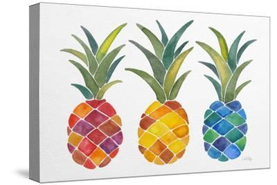 Pineapples-Cat Coquillette-Stretched Canvas Print