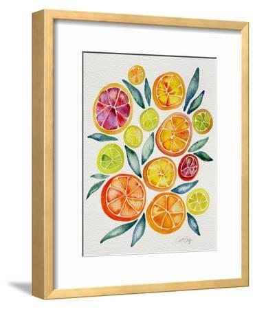 Citrus Slices-Cat Coquillette-Framed Giclee Print