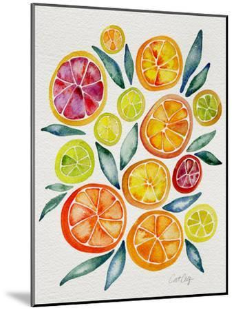 Citrus Slices-Cat Coquillette-Mounted Giclee Print
