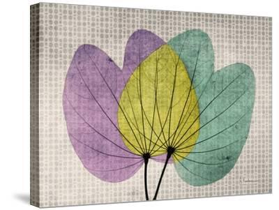 SoHo Orchid 1-Albert Koetsier-Stretched Canvas Print