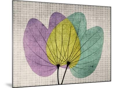 SoHo Orchid 1-Albert Koetsier-Mounted Premium Giclee Print