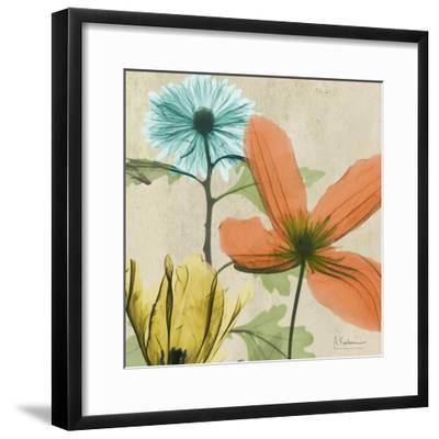 New Avalon V-Albert Koetsier-Framed Premium Giclee Print