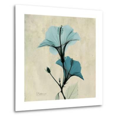 Hibiscus Moment-Albert Koetsier-Metal Print