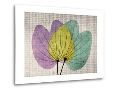 SoHo Orchid 1-Albert Koetsier-Metal Print