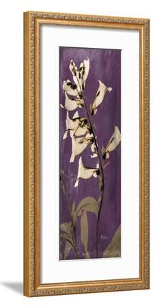 Purple Opus Foxglove-Albert Koetsier-Framed Premium Giclee Print