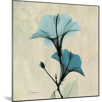 Hibiscus Moment-Albert Koetsier-Mounted Premium Giclee Print