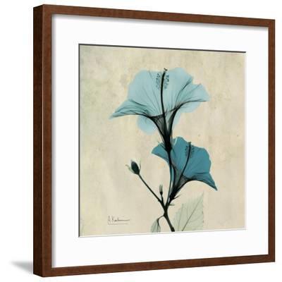 Hibiscus Moment-Albert Koetsier-Framed Premium Giclee Print