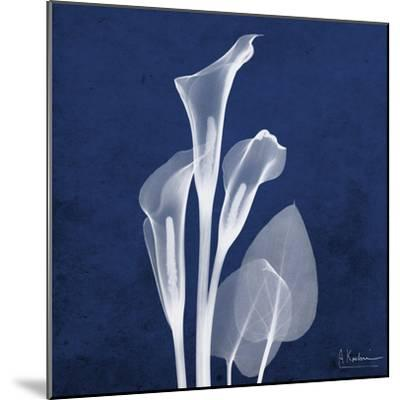 Three Indigo Calla Lilies-Albert Koetsier-Mounted Premium Giclee Print
