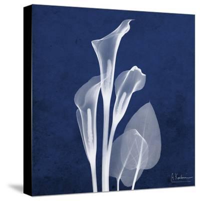 Three Indigo Calla Lilies-Albert Koetsier-Stretched Canvas Print