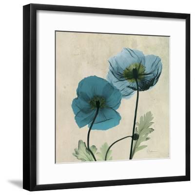 Iceland Poppy Duo 2-Albert Koetsier-Framed Premium Giclee Print