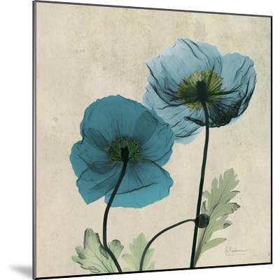 Iceland Poppy Duo 2-Albert Koetsier-Mounted Premium Giclee Print