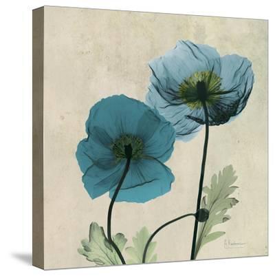 Iceland Poppy Duo 2-Albert Koetsier-Stretched Canvas Print