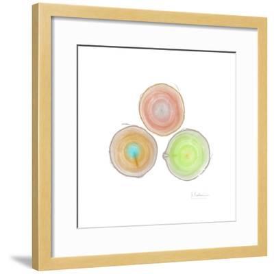 Tree Ring 9-Albert Koetsier-Framed Premium Giclee Print