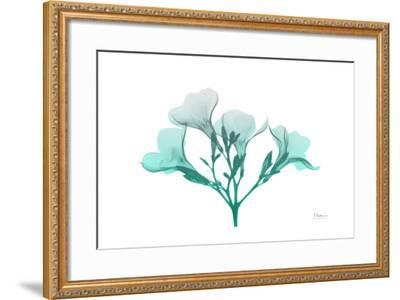 Oleander Turq Ombre-Albert Koetsier-Framed Art Print