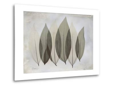 The Grays 5-Albert Koetsier-Metal Print