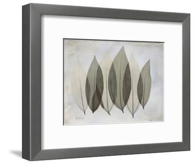 The Grays 5-Albert Koetsier-Framed Premium Giclee Print