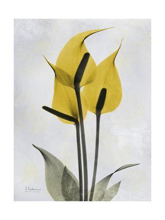 Golden Flamingo-Albert Koetsier-Framed Premium Giclee Print