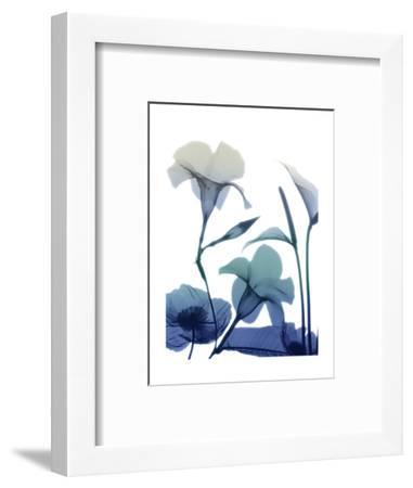 Morning Bloom 1-Albert Koetsier-Framed Art Print