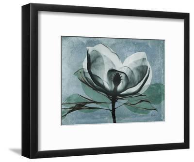 Magnolia Blues 1-Albert Koetsier-Framed Premium Giclee Print