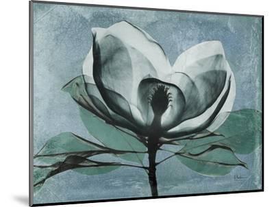 Magnolia Blues 1-Albert Koetsier-Mounted Premium Giclee Print