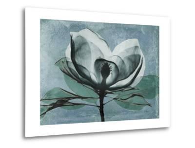 Magnolia Blues 1-Albert Koetsier-Metal Print