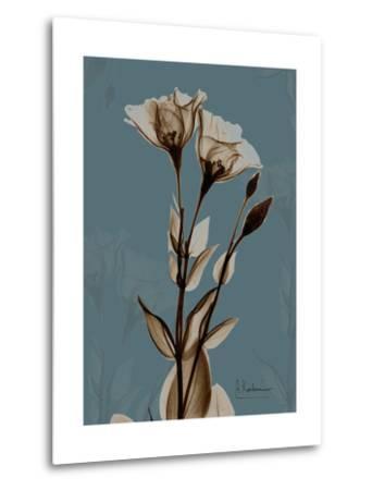 Deep Flora 2-Albert Koetsier-Metal Print