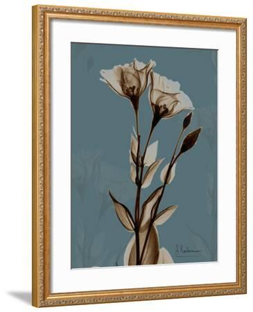 Deep Flora 2-Albert Koetsier-Framed Premium Giclee Print
