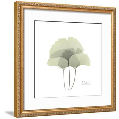 Ginko Portrait 2-Albert Koetsier-Framed Premium Giclee Print