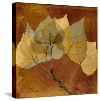Golden Aspen-Albert Koetsier-Stretched Canvas Print