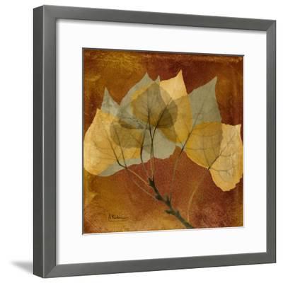 Golden Aspen-Albert Koetsier-Framed Art Print