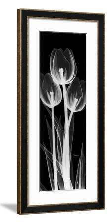 Tall Tulips Inverted-Albert Koetsier-Framed Art Print