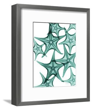 Starfish-Albert Koetsier-Framed Premium Giclee Print