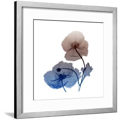 Iceland-Albert Koetsier-Framed Art Print