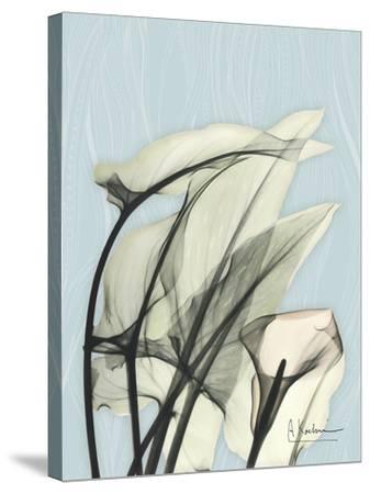 Calla Lily Leaves-Albert Koetsier-Stretched Canvas Print