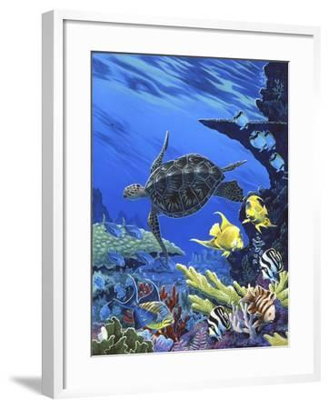 Treasures of the Sea I-Apollo-Framed Giclee Print