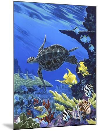 Treasures of the Sea I-Apollo-Mounted Giclee Print