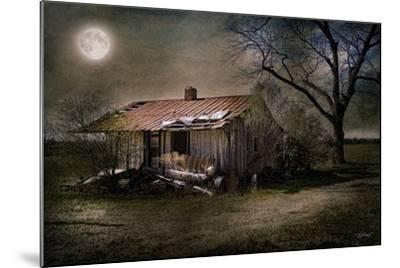 Forgotten in Moonlight-Barbara Simmons-Mounted Giclee Print