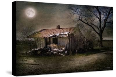 Forgotten in Moonlight-Barbara Simmons-Stretched Canvas Print