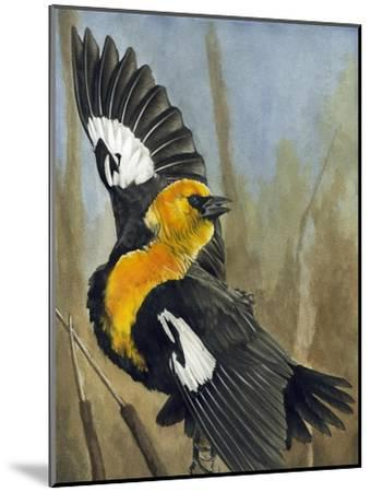 The Flirt-Barbara Keith-Mounted Giclee Print