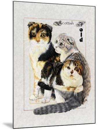Scottish Fold-Barbara Keith-Mounted Giclee Print