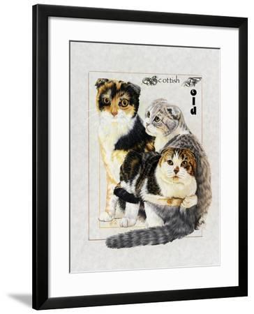 Scottish Fold-Barbara Keith-Framed Giclee Print