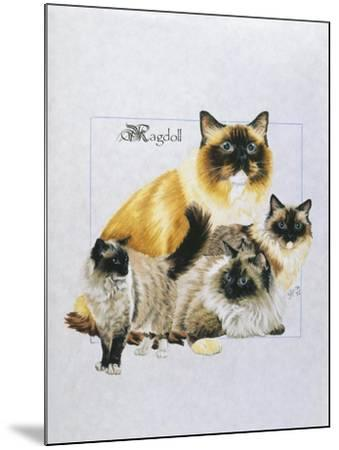 Ragdoll-Barbara Keith-Mounted Giclee Print