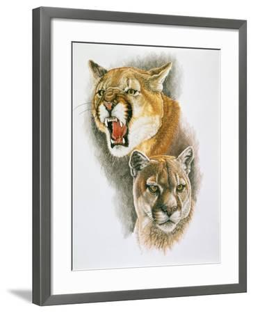 Mountain King-Barbara Keith-Framed Giclee Print